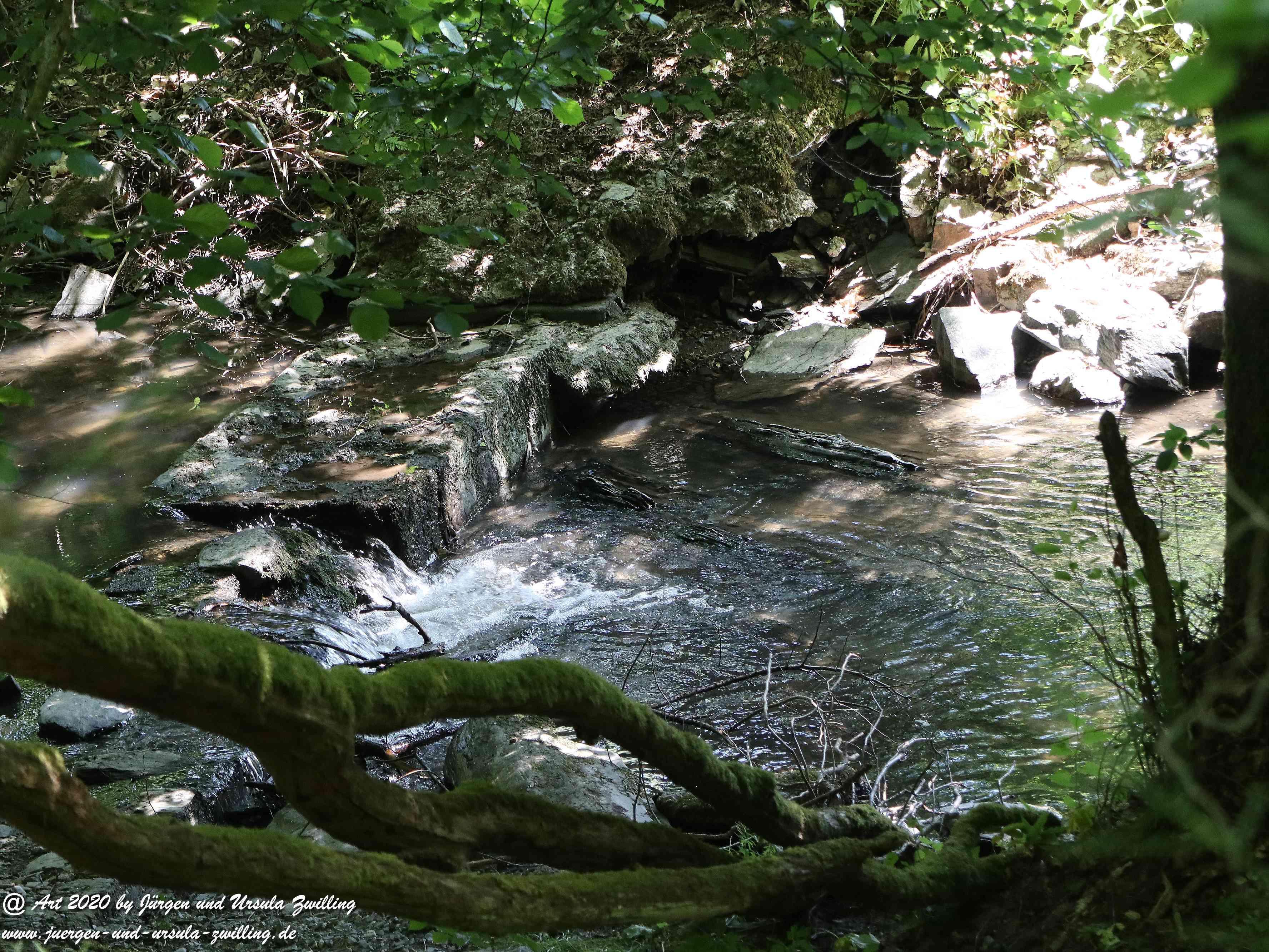 Wispertalsteig Wisper Trail 8