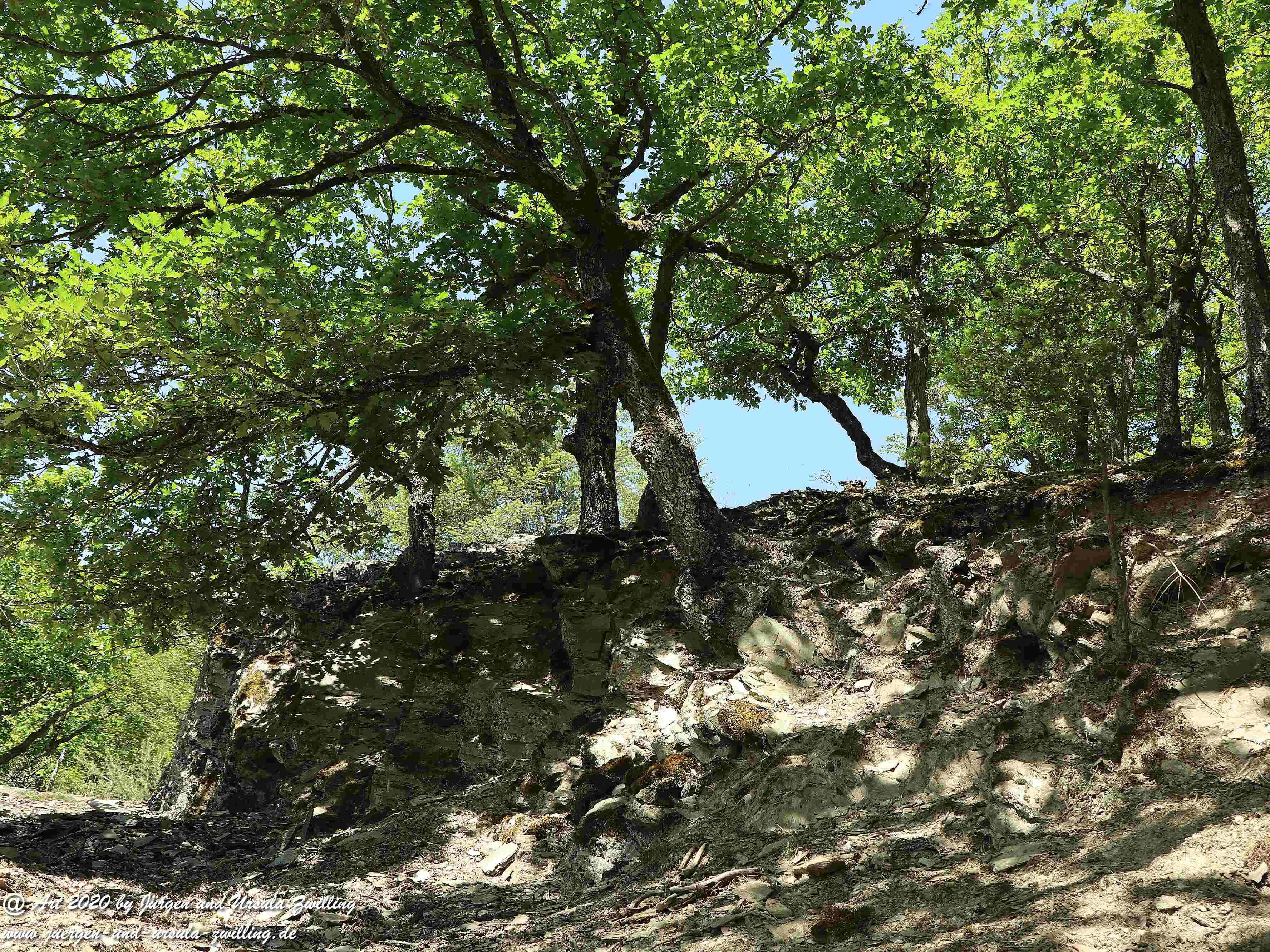 Wispertalsteig Wisper Trail 12