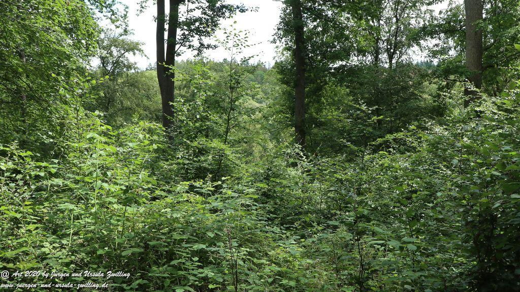 Philosophische Bildwanderung  Naurother Grubengold Wisper Trail - Taunus