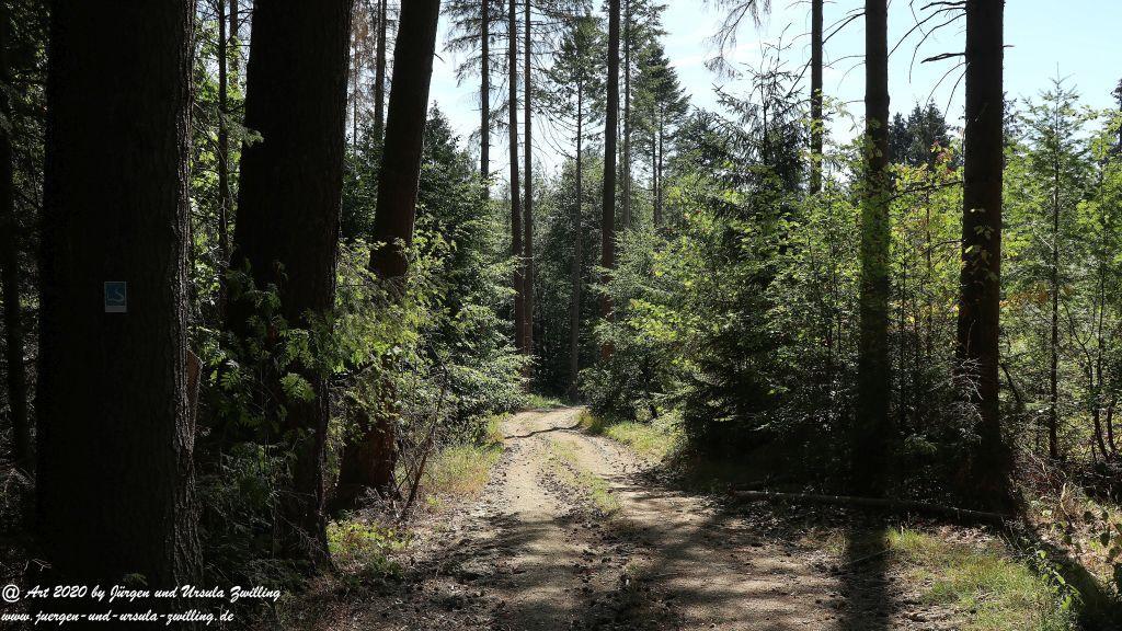 Philosophische Bildwanderung  Wisper Outback Wisper Trail - Taunus