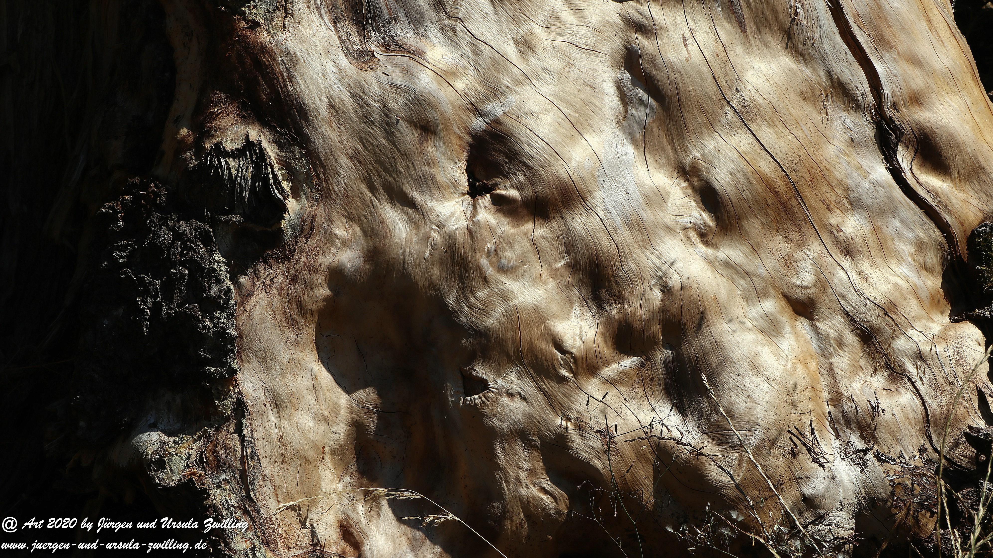 Wisper Outback 8