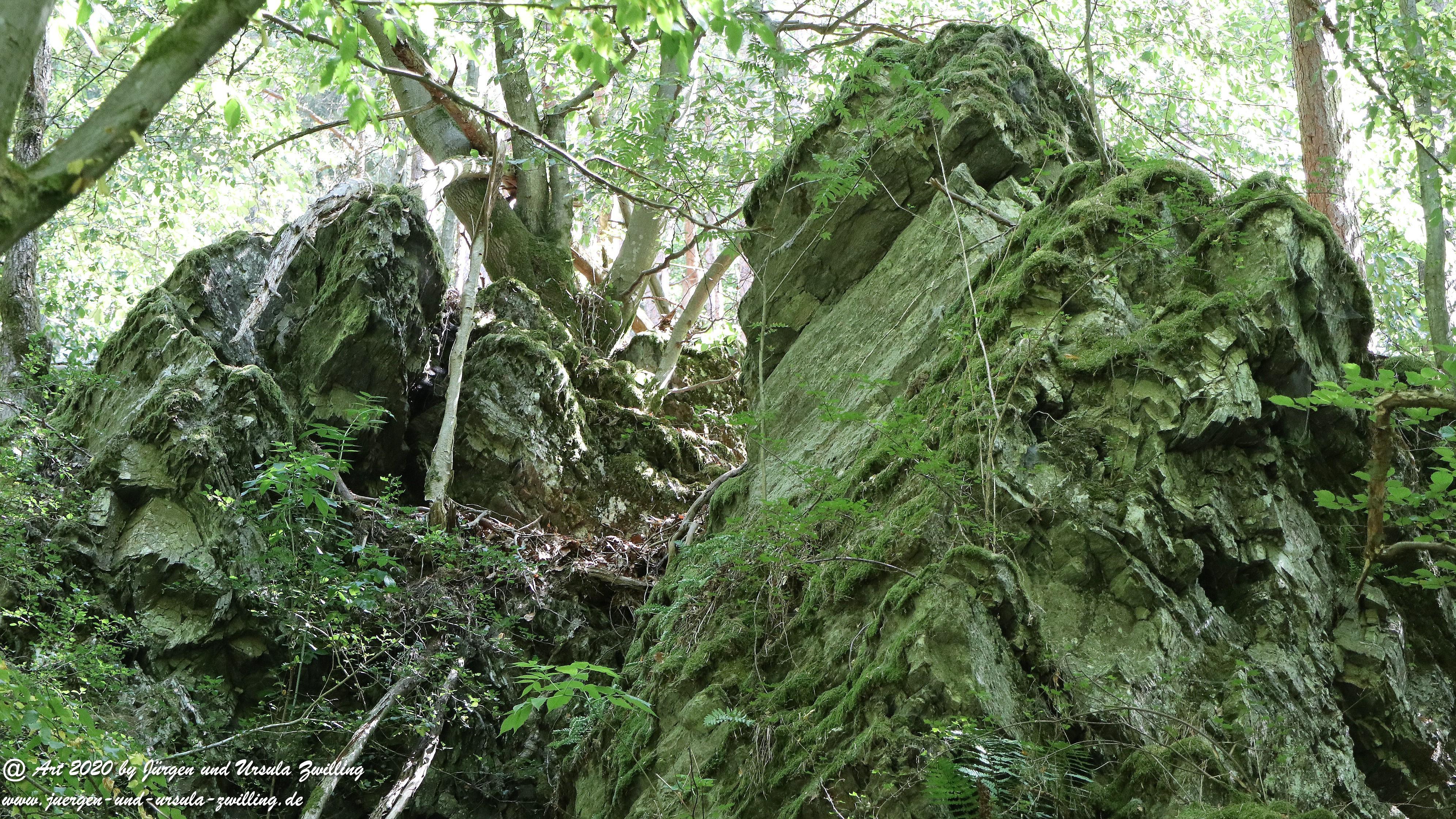 Wisper Outback 31