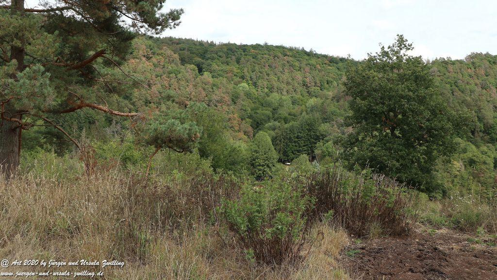 Philosophische Bildwanderung Glaabacher Almauftrieb Wisper Trail - Taunus