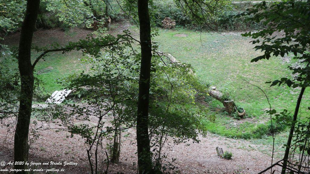 Philosophische Bildwanderung  Ranseler Höhenrausch Wisper Trail - Taunus