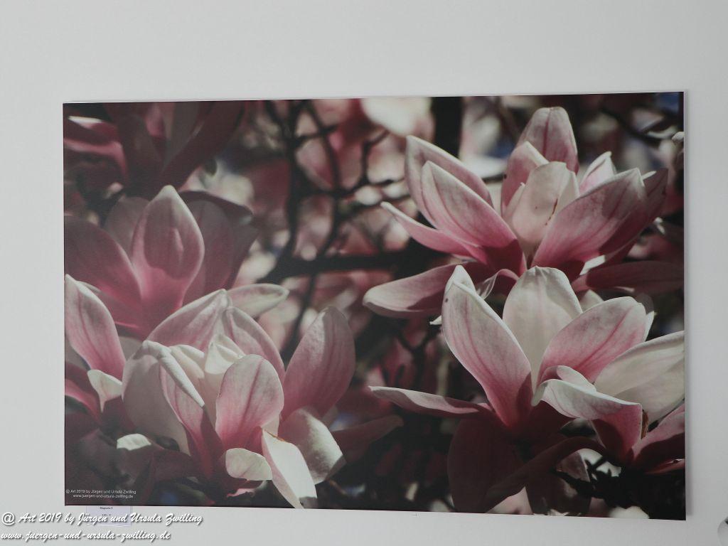 Blick und Einladung in unsere Galerie - Magnolie 9