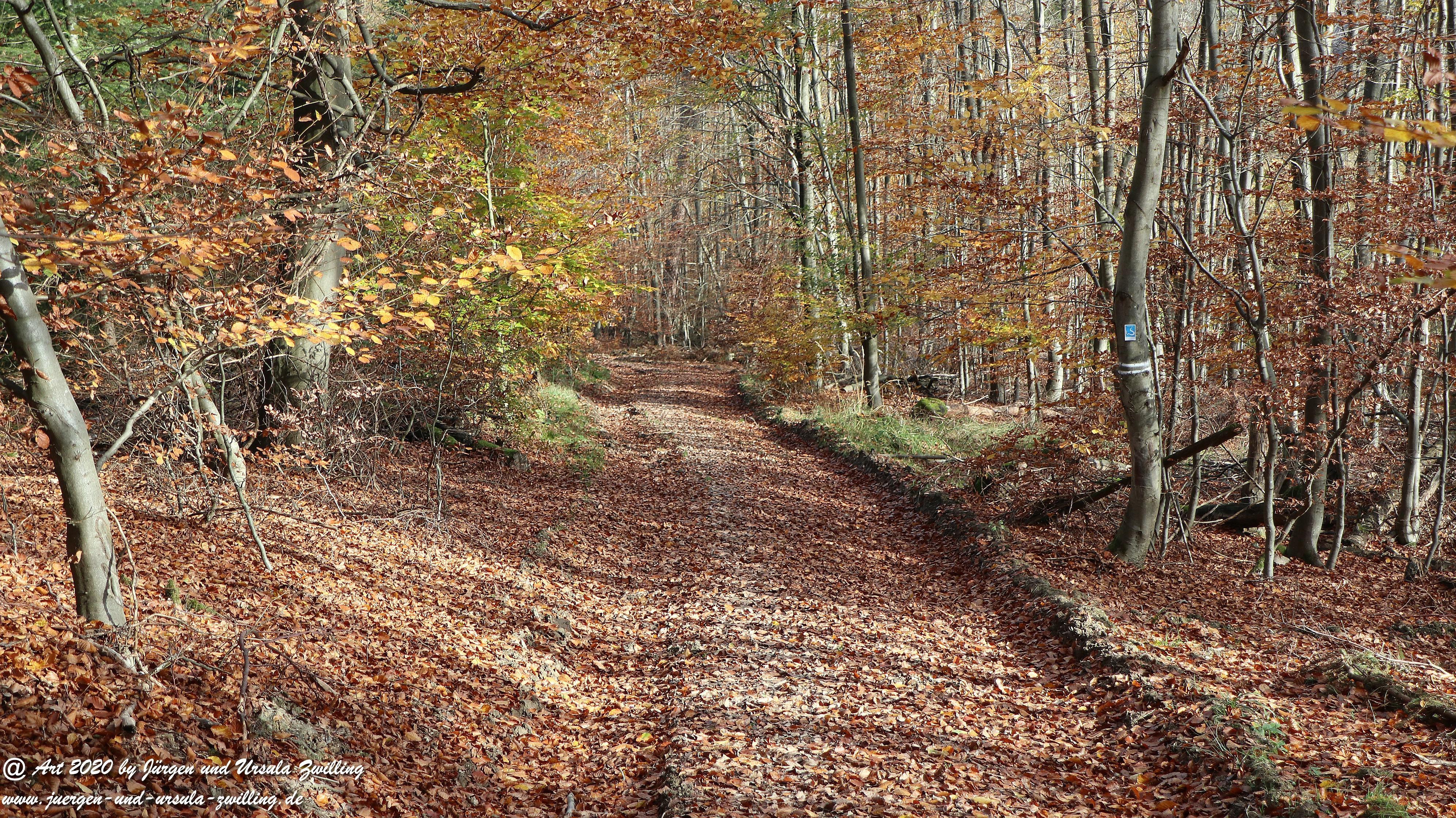 Wollmerschieder Grenzweg 4