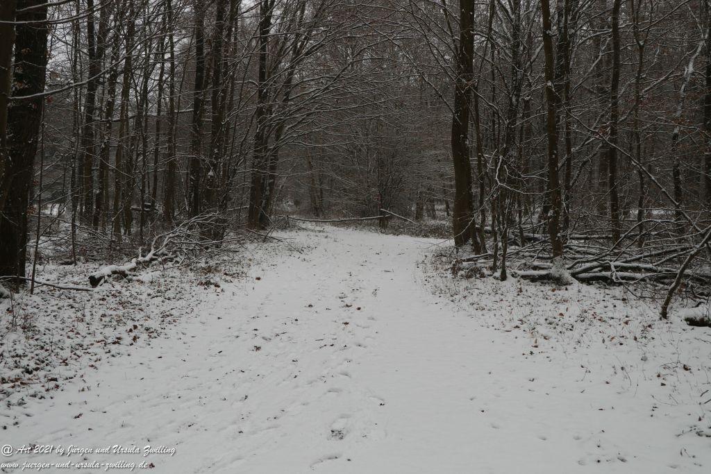 Schnee in Rheinhessen - Mainz Finthen - Ober Olmer Wald