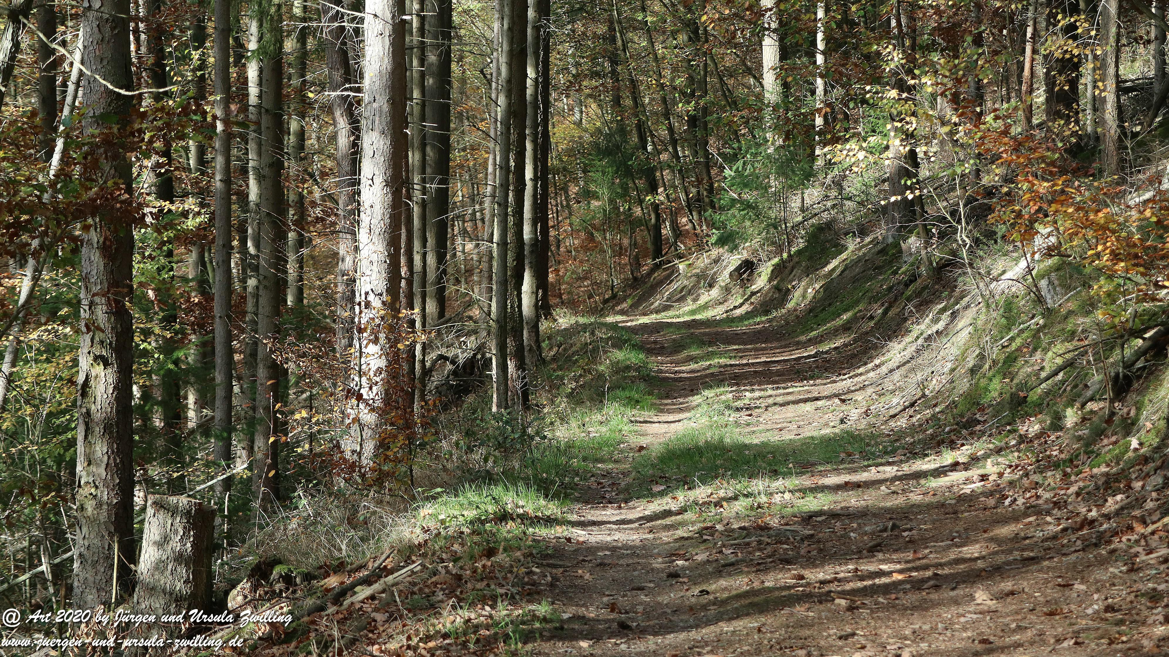 Wollmerschieder Grenzweg 25