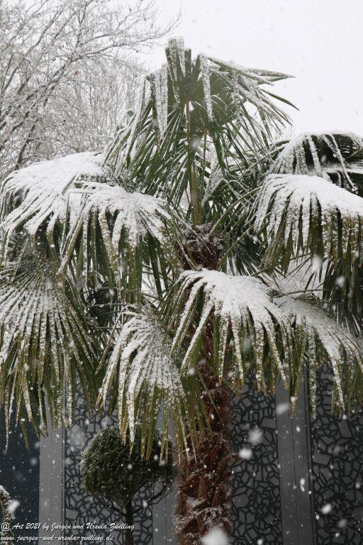 Wintereinbruch im Garten