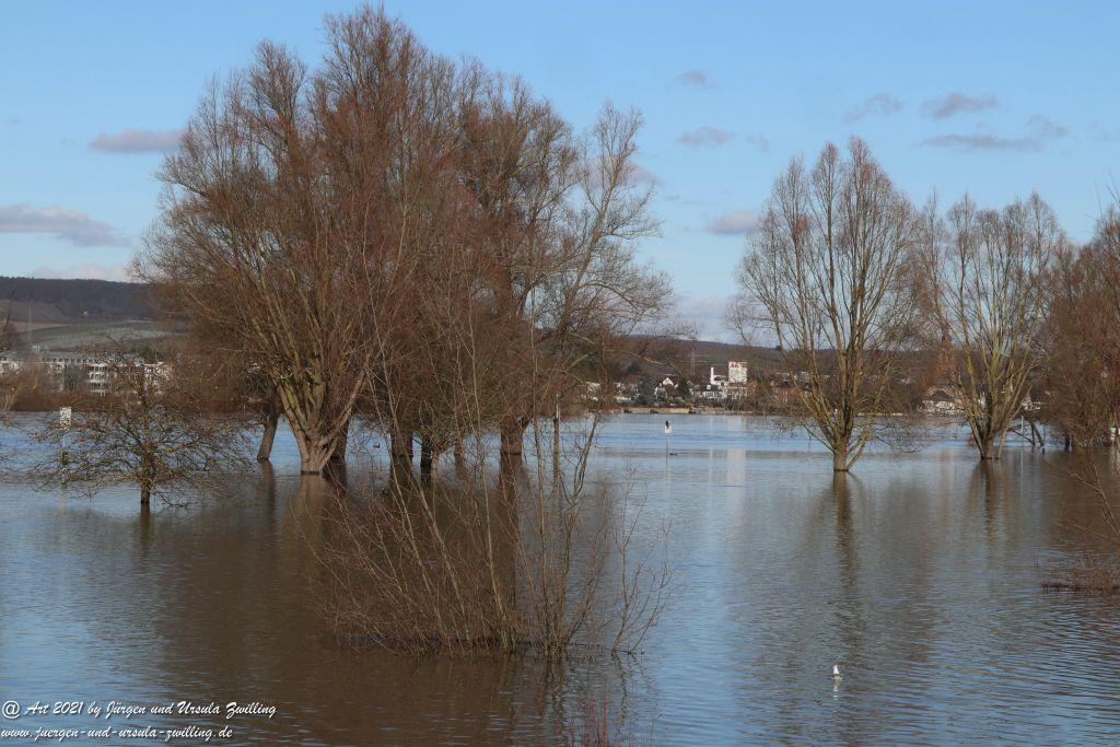 Rheinhochwasser bei Heidenfahrt -Heidesheim - Rheinhessen