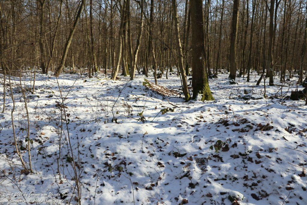 Frostiger Februar in Rheinhessen - Mainz Finthen - Ober Olmer Wald