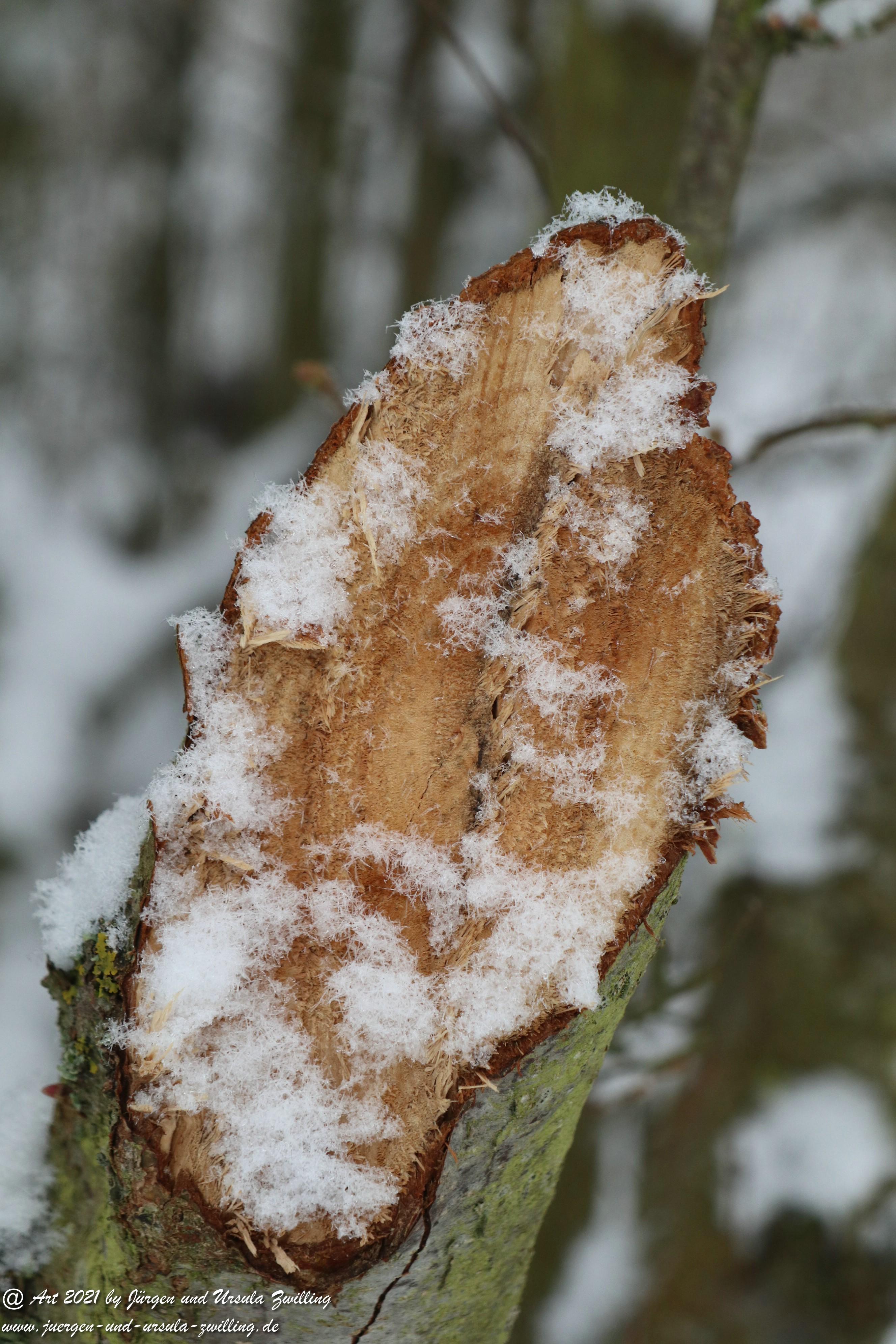 Schnee in Rheinhessen 4