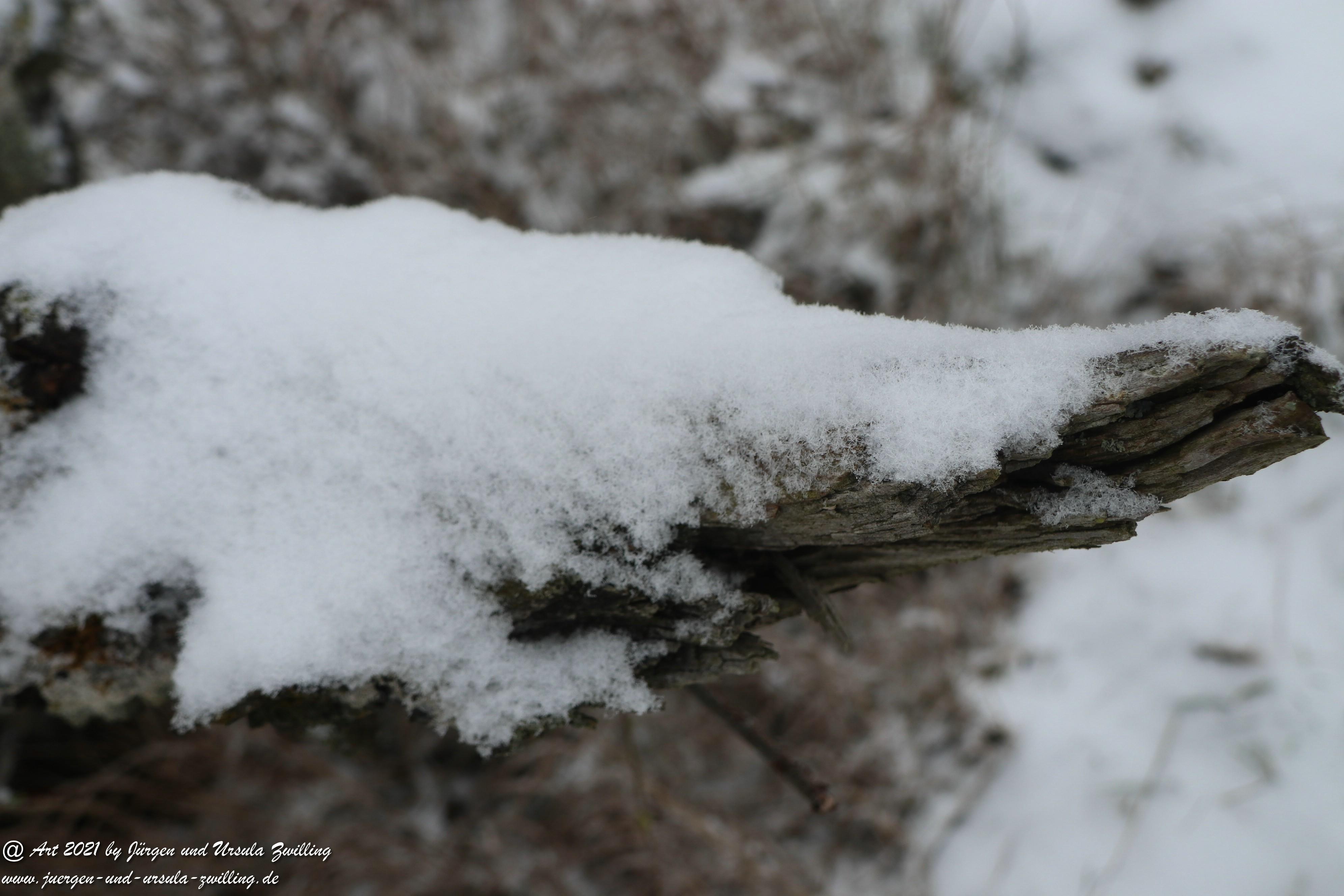 Schnee in Rheinhessen 6