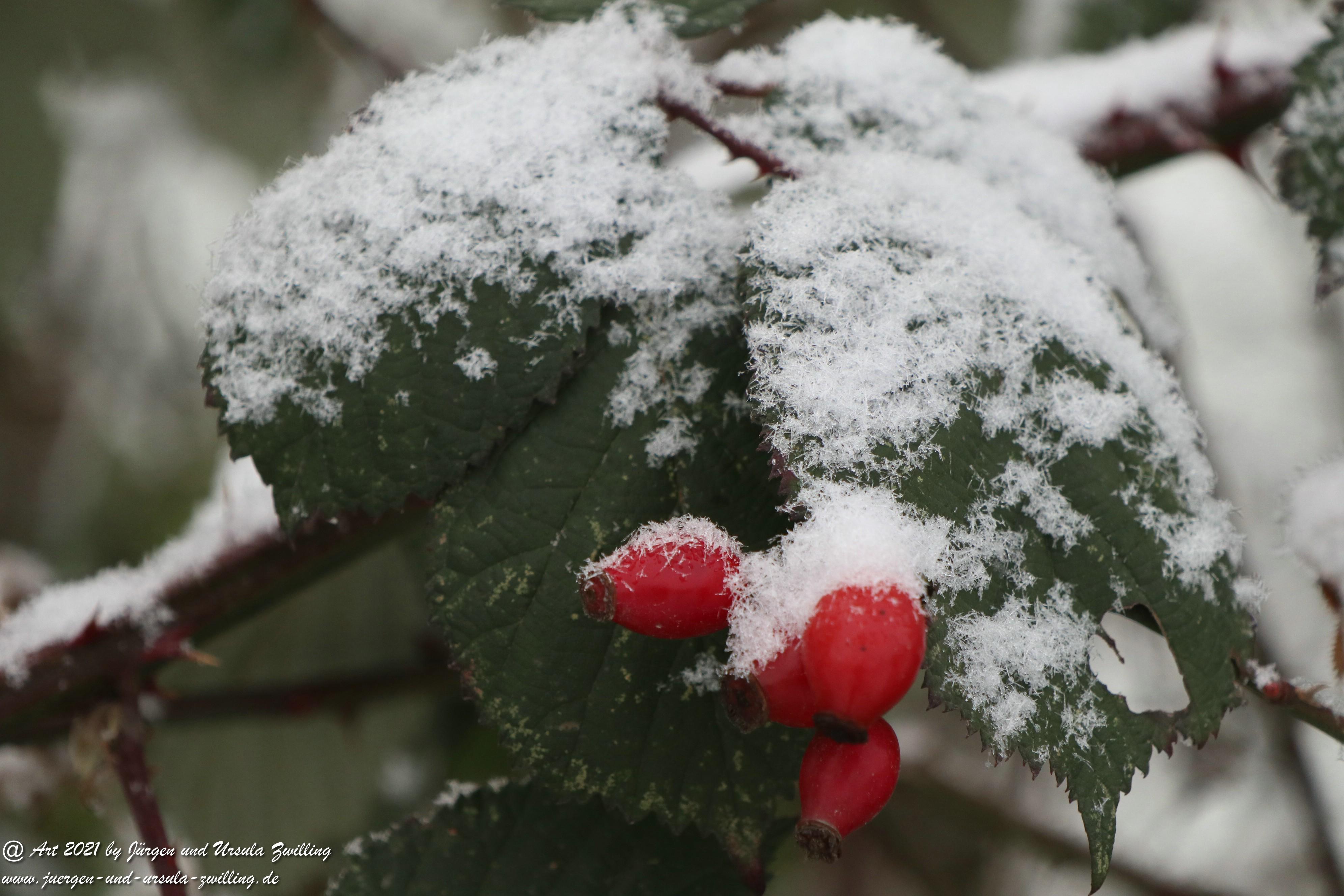 Schnee in Rheinhessen 7