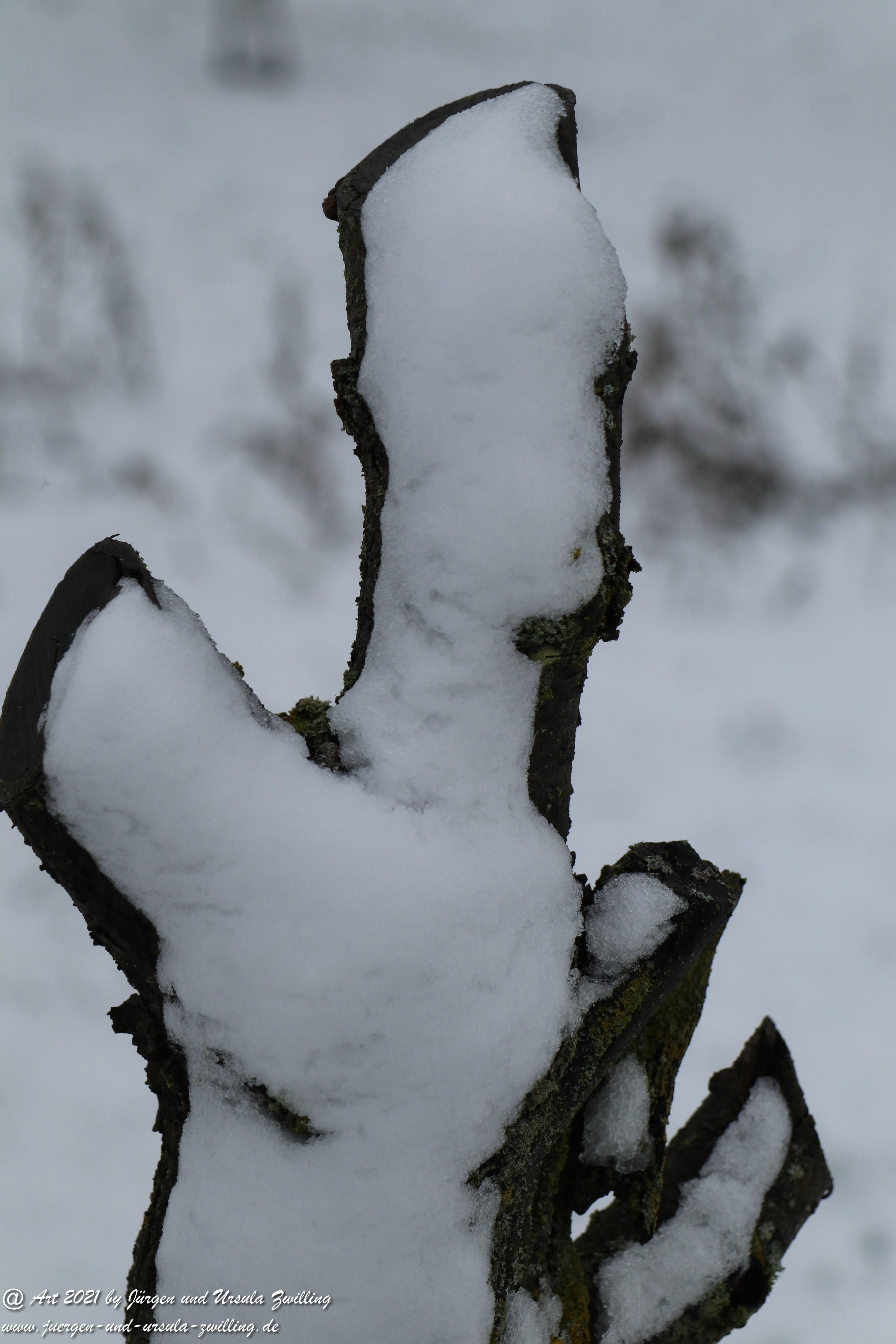 Rheinhessische Winterimpressionen  1