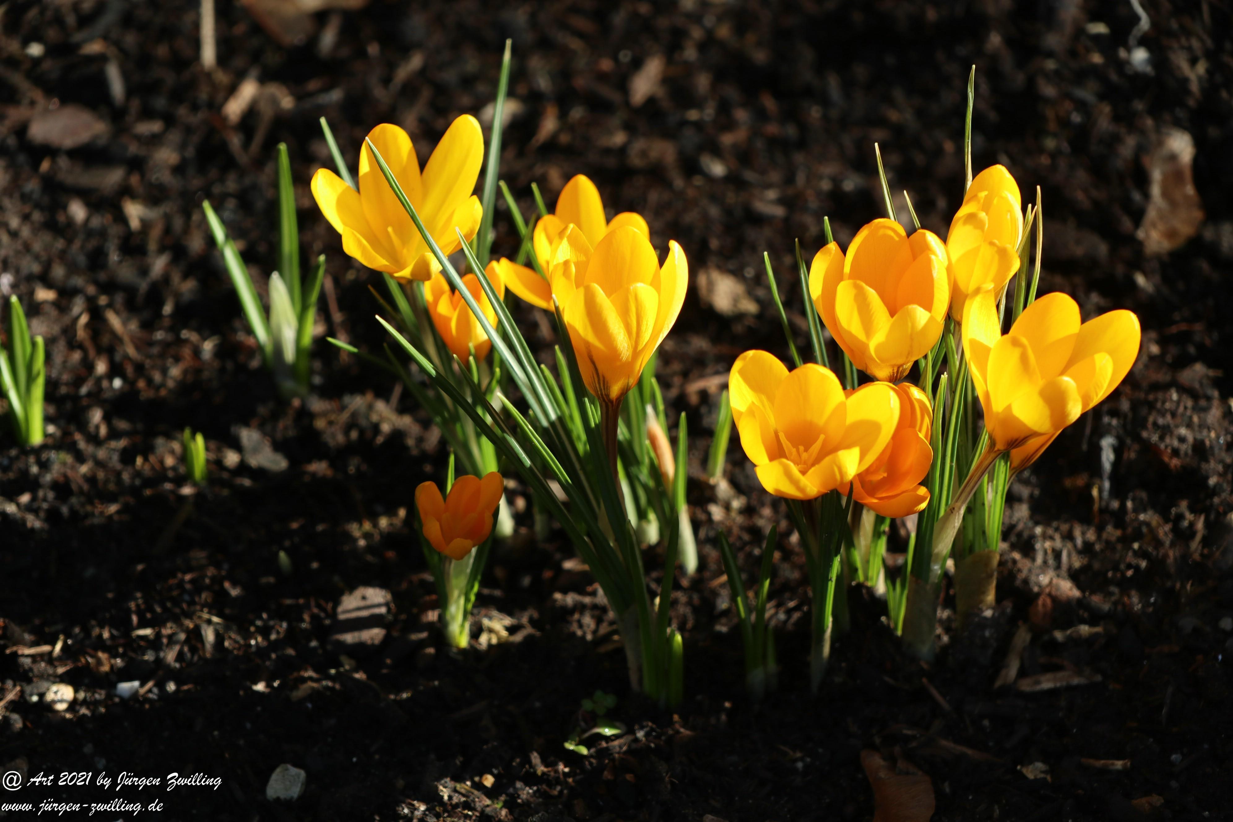 Frühlingsstart in Rheinhessen 1