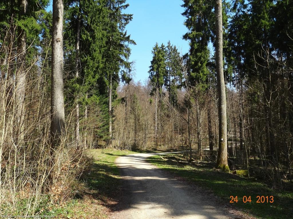 Philosophische Bildwanderung Traufgang-Schlossfelsenpfad