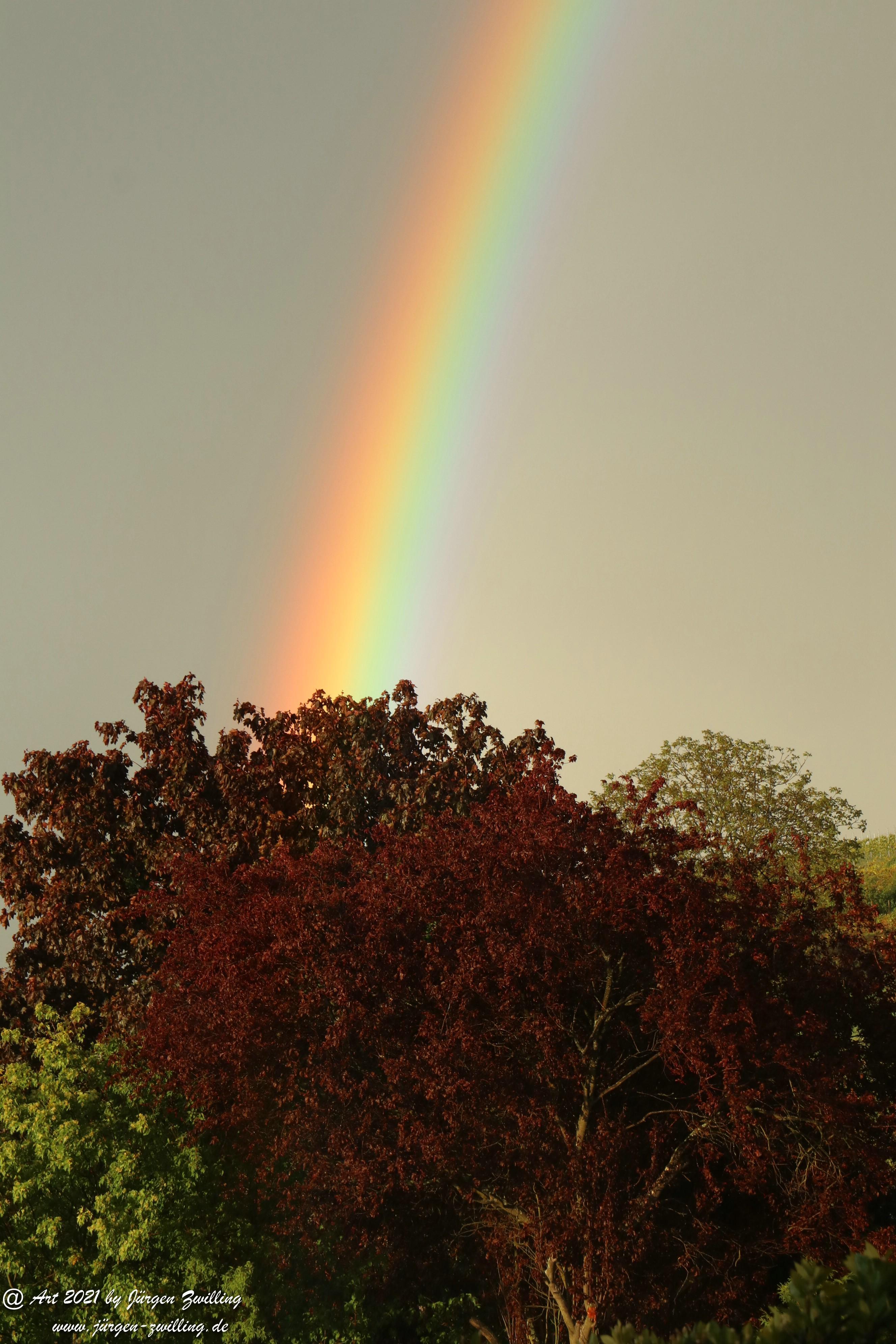 Regenbogen 11