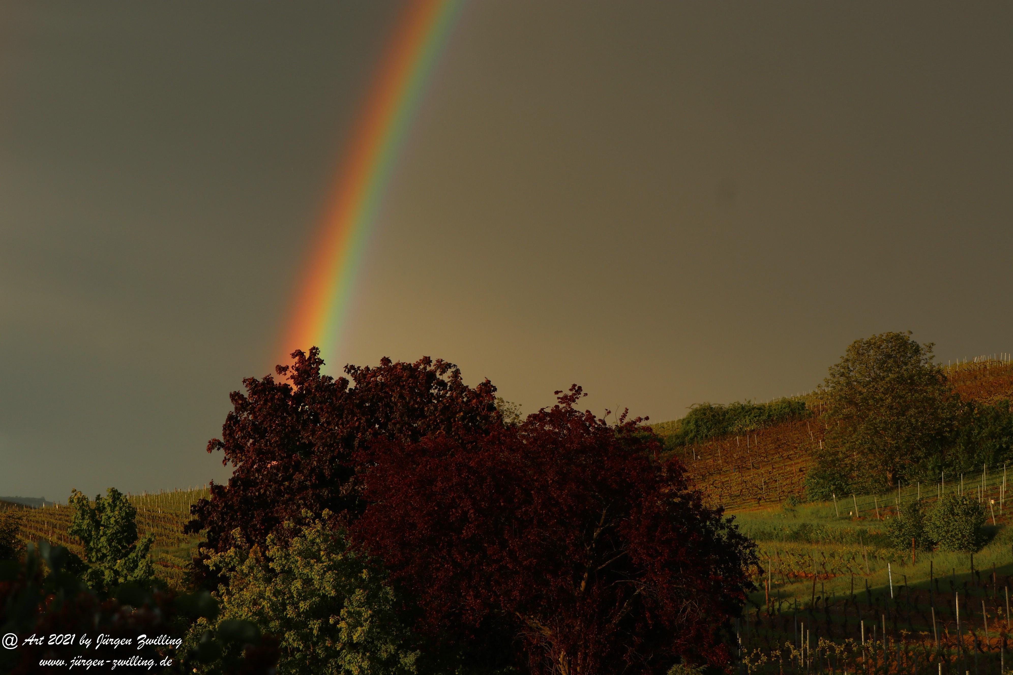 Regenbogen 15