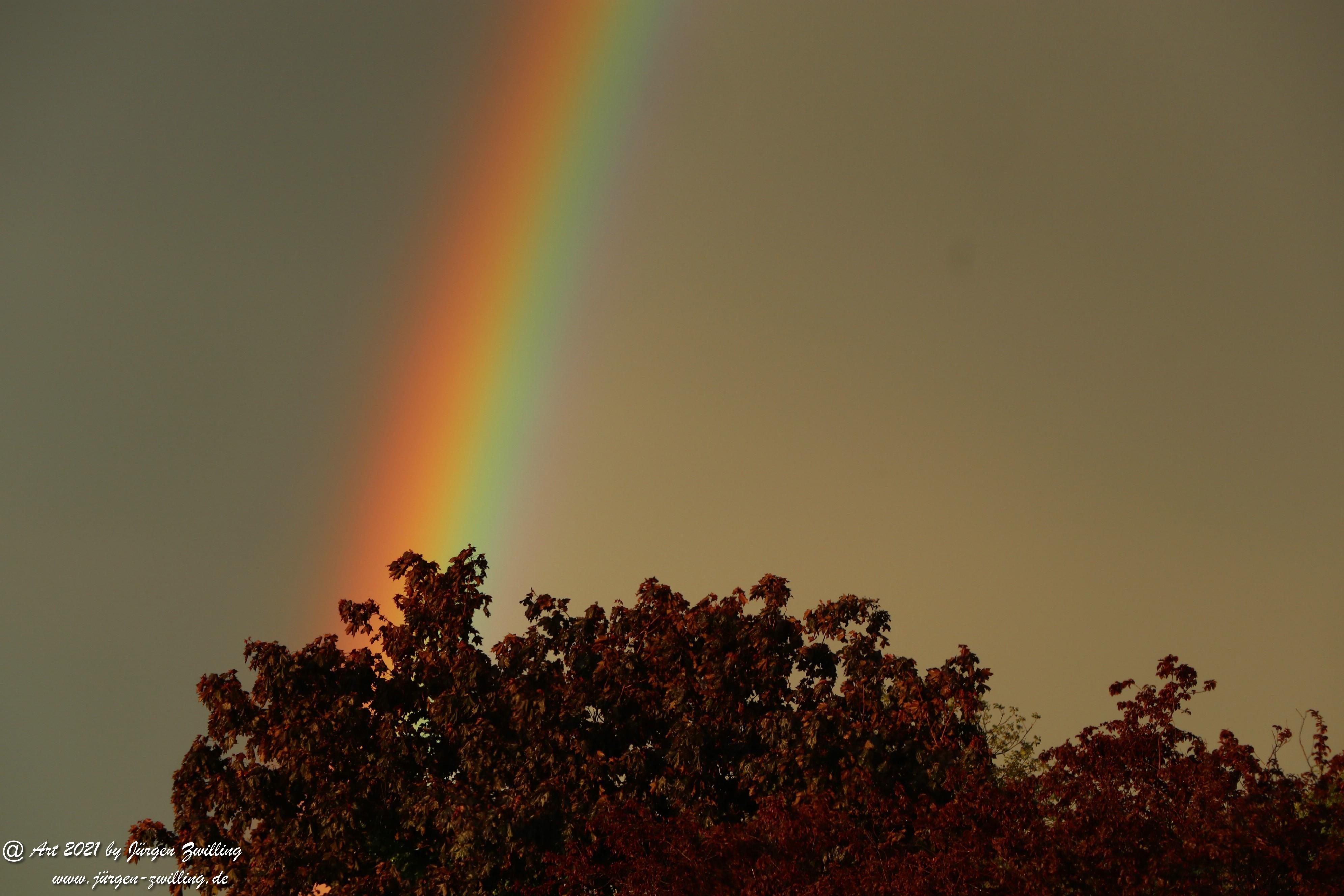 Regenbogen 16