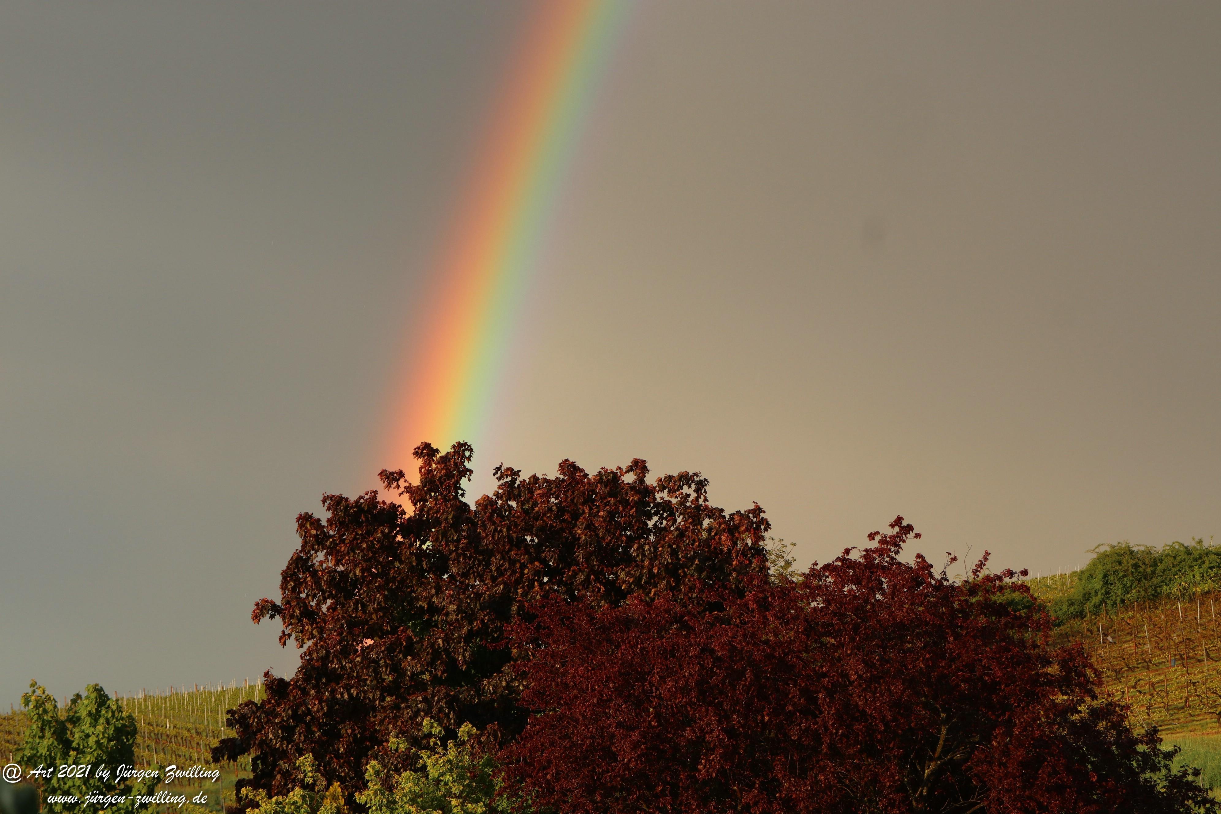 Regenbogen 17