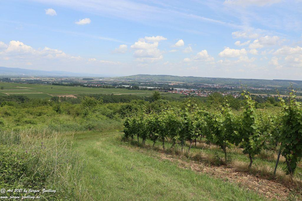 Philosophische Bildwanderung  Vitaltour Eremitenpfad - Bretzenheim an der Nahe - Rheinhessen