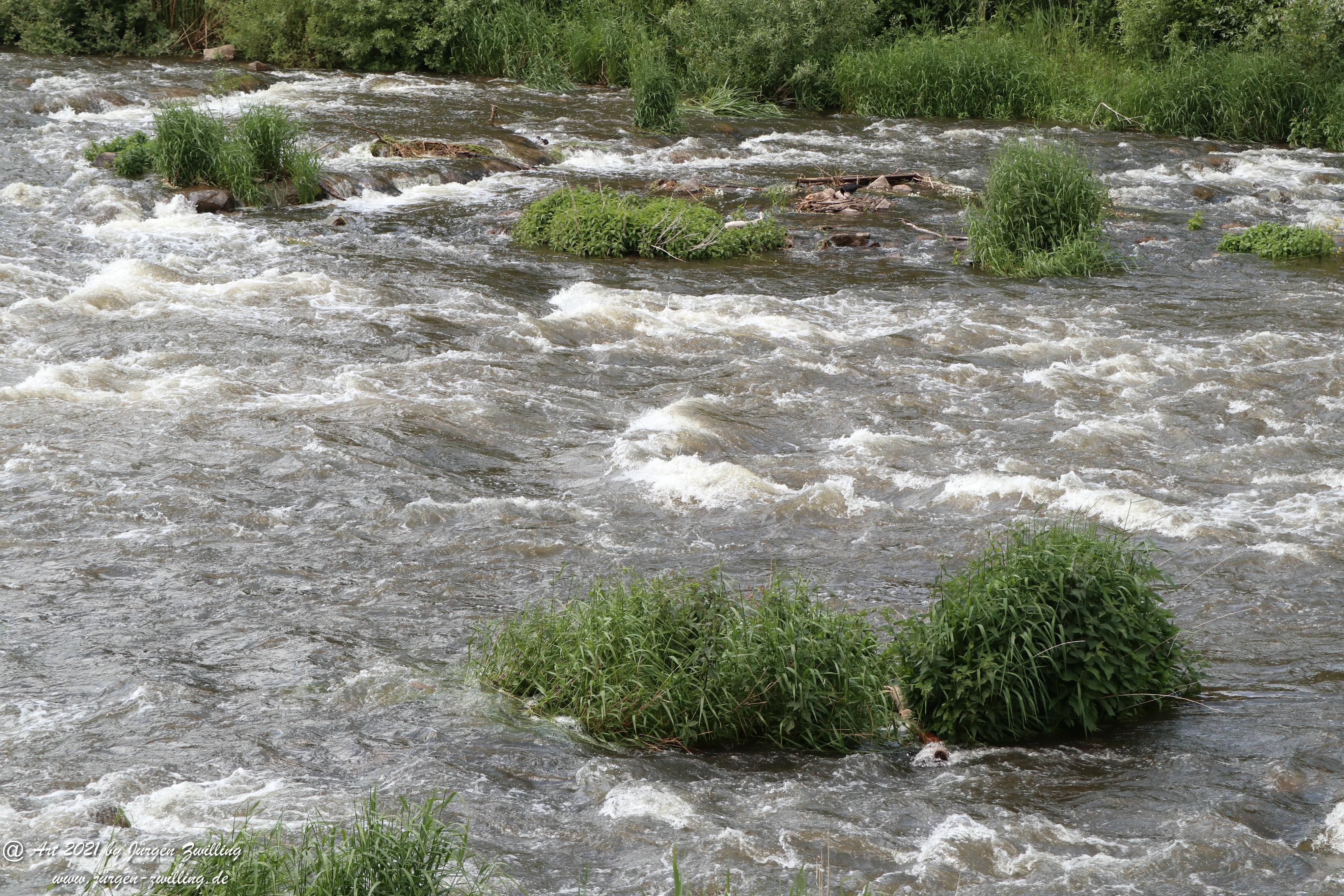 Wilde Wasser 3