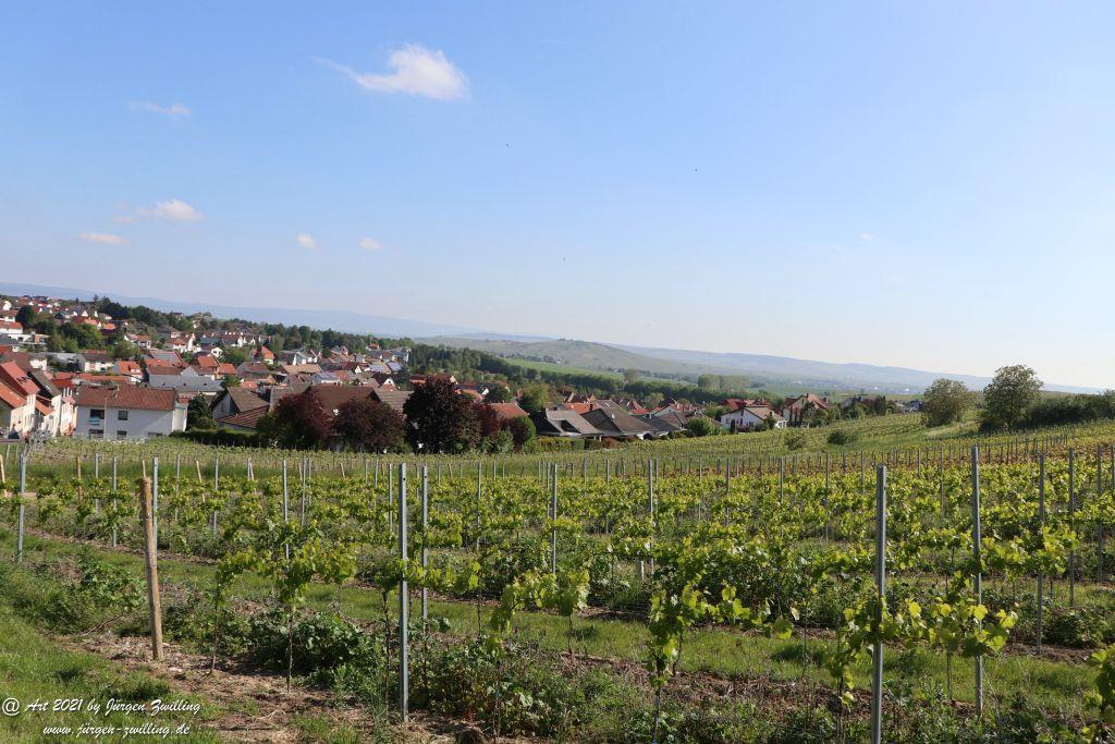 Hackenheim - Rheinhessen