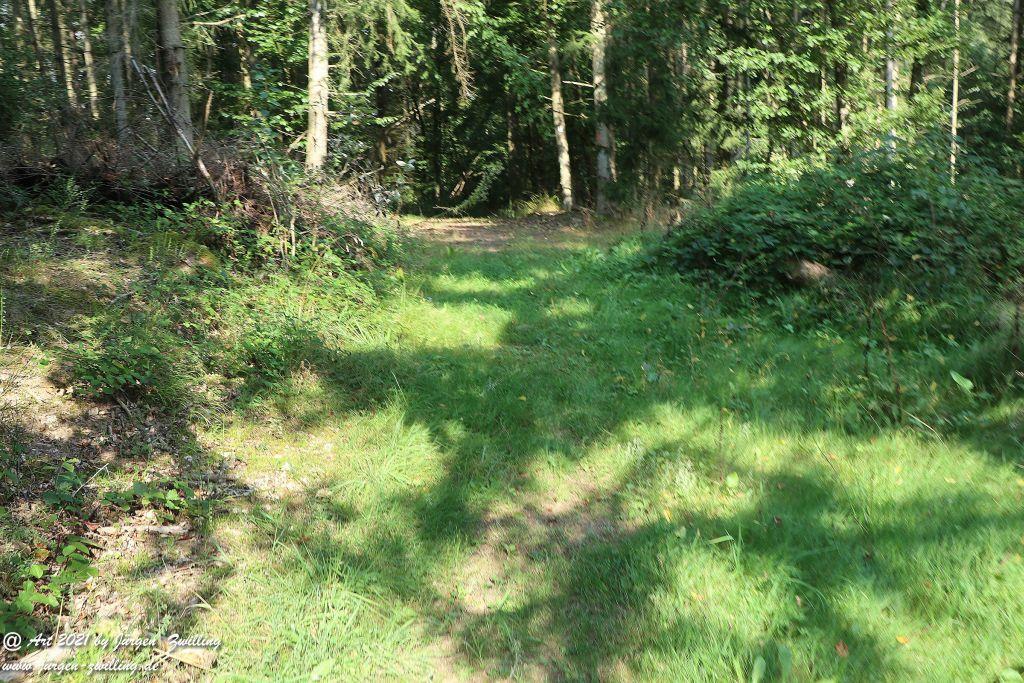 Philosophische Bildwanderung Vitaltour Um die Wüstung - Bockenauer Schweiz - Soonwald - Nahe