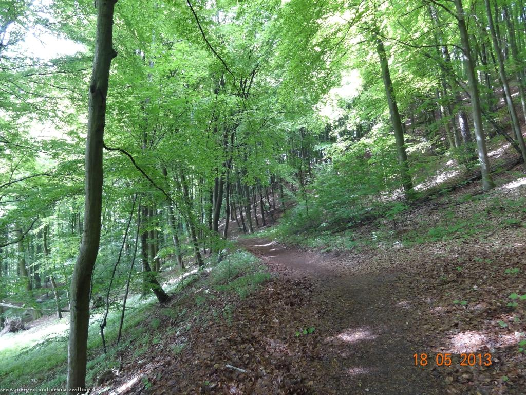 Philosophische Bildwanderung Nibelungentour