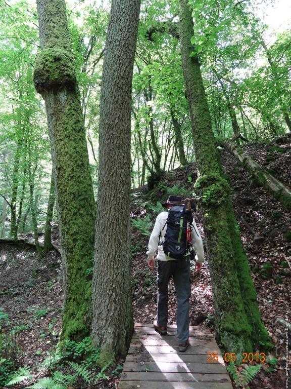 Philosophische Bildwanderung Kupfer und Jaspis Weg von Niederwörresbach