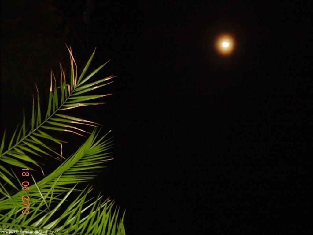 Garten bei Nacht 18.06.2013