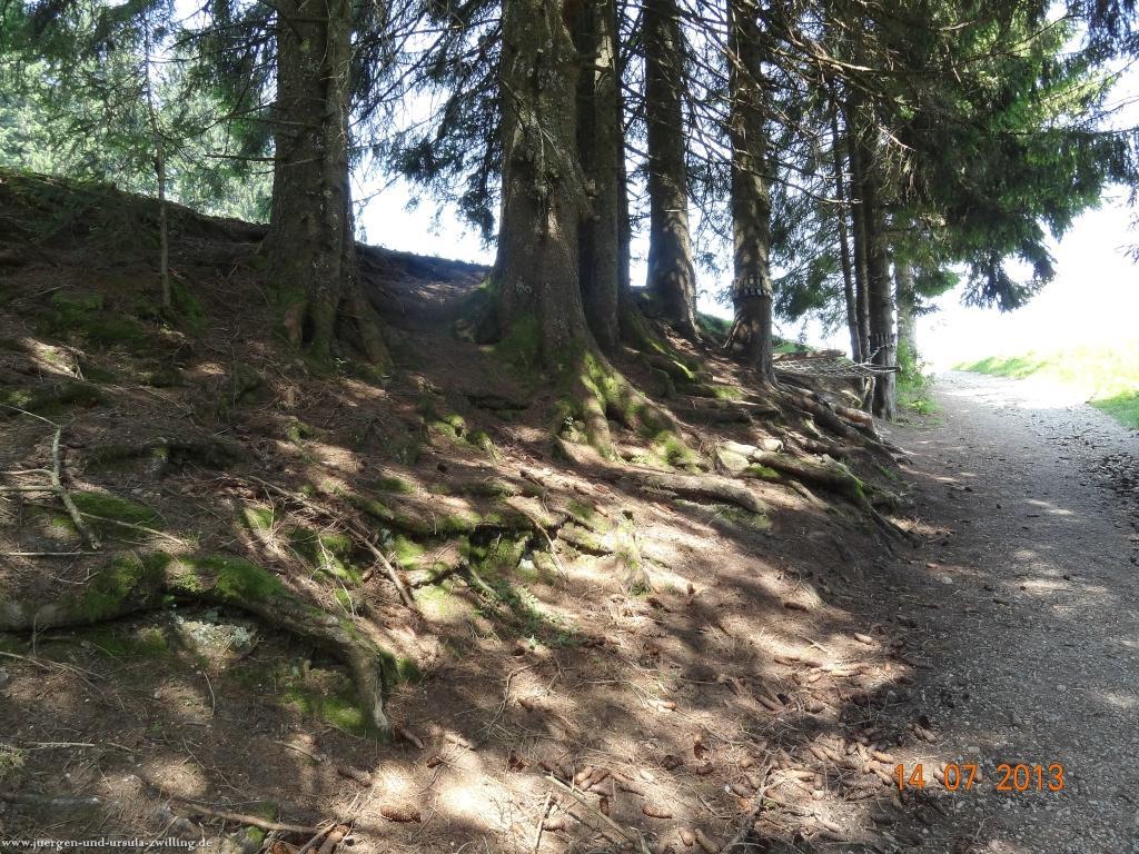 Philosophische Bildwanderung Premiumwanderweg Nagelfluhschleife Alpenfreiheit im Allgäu