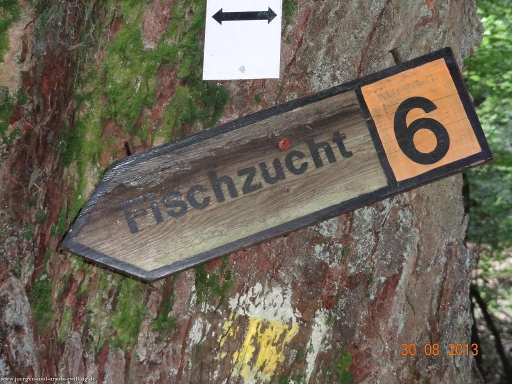 Philosophische Bildwanderung Schläferskopf - Eiserne Hand im Taunus
