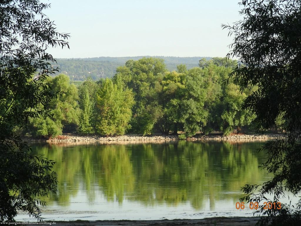 Philosophische Bildwanderung -Heidenfahrt am Rhein - Ingelheim  - Mainz Lerchenberg