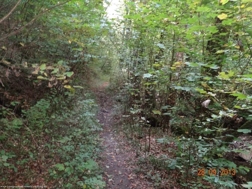 Philosophische Bildwanderung Willigsweg im Naheland