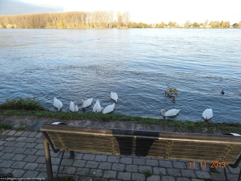 Philosophische Bildwanderung Nierstein - Oppenheim - Nierstein am Rhein