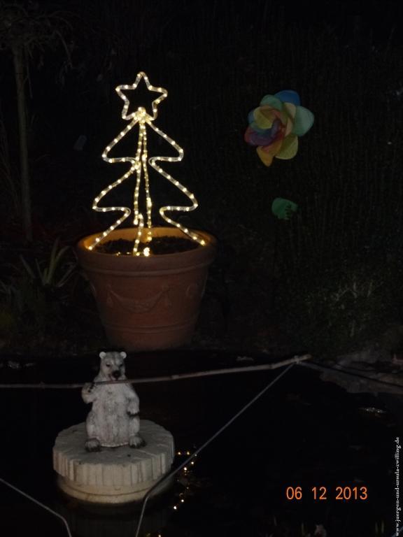 Garten im Advent bei Nacht