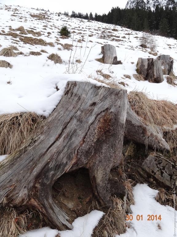 Philosophische Bildwanderung - Winterwanderung zur Gaisalpe im Allgäu