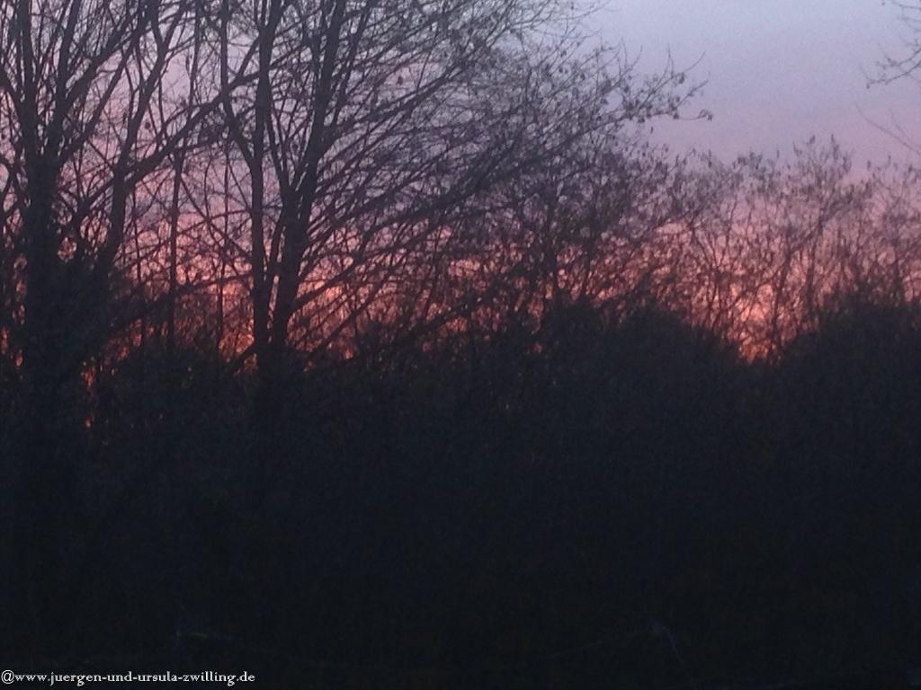03.03.Sonnenuntergang