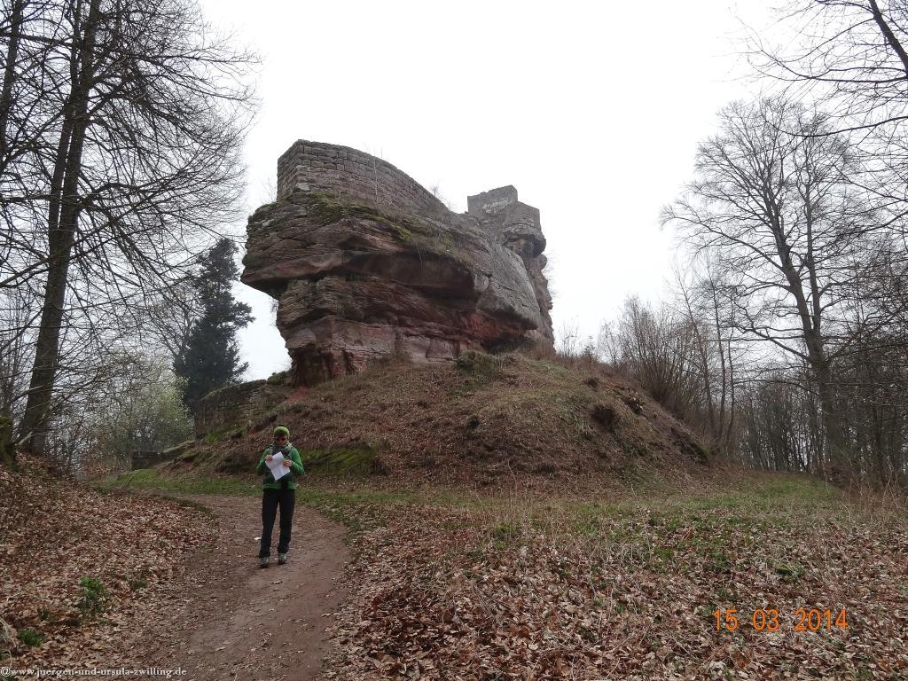 Philosophische Bildwanderungen 4-Burgen-Tour-Nothweiler
