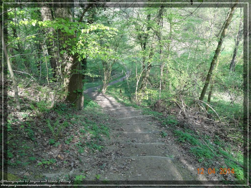 Philosophische Bildwanderung -  Erlebnisweg Lindenfels - Odenwald