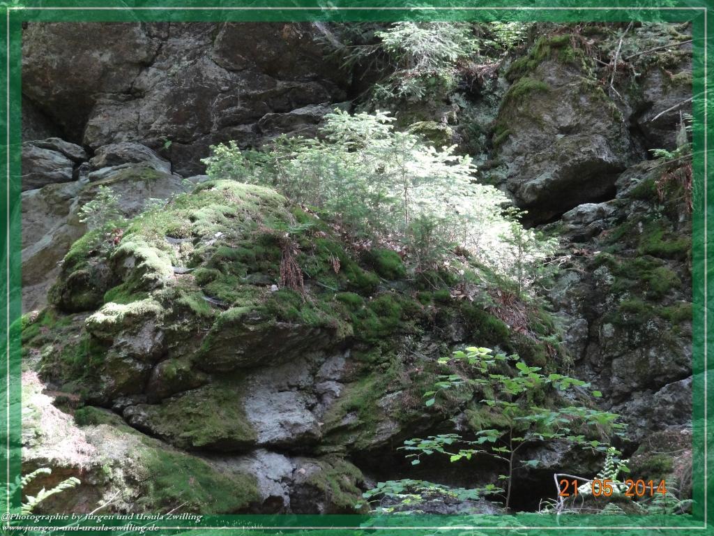 Philosophische Bildwanderung Über den Falkenstein im Bayerischen Wald
