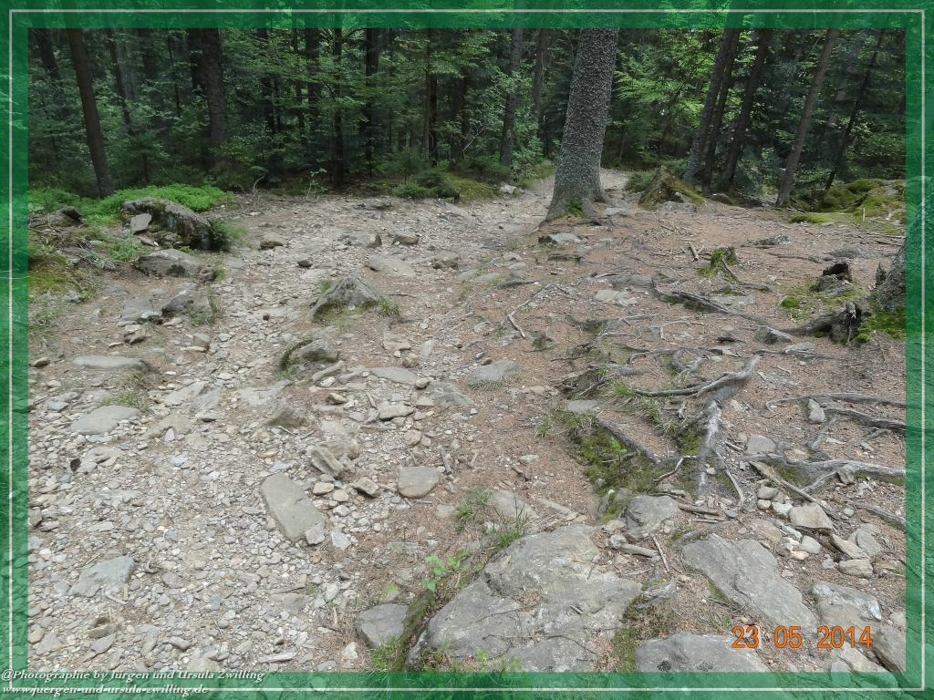 Philosophische Bildwanderung Brennes - Großer Arber - Kleiner Arber - Kleiner Arbersee – Mooshütte - Brennes - Bayerischer Wald