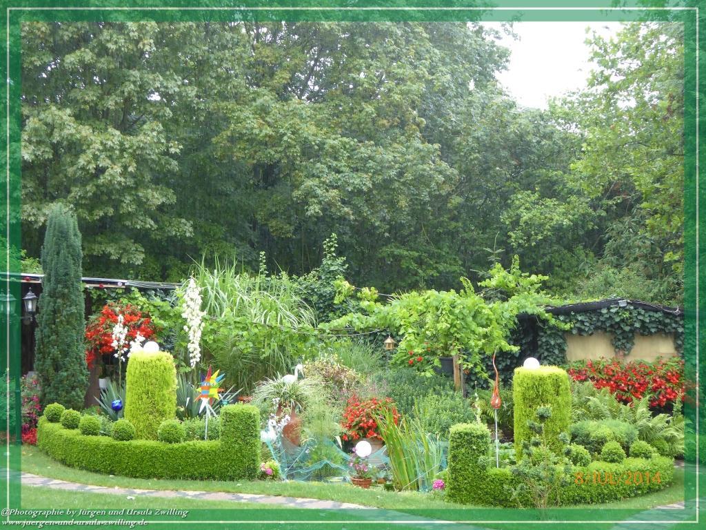 08.07.2014 Garten im lang erwarteten  Regen