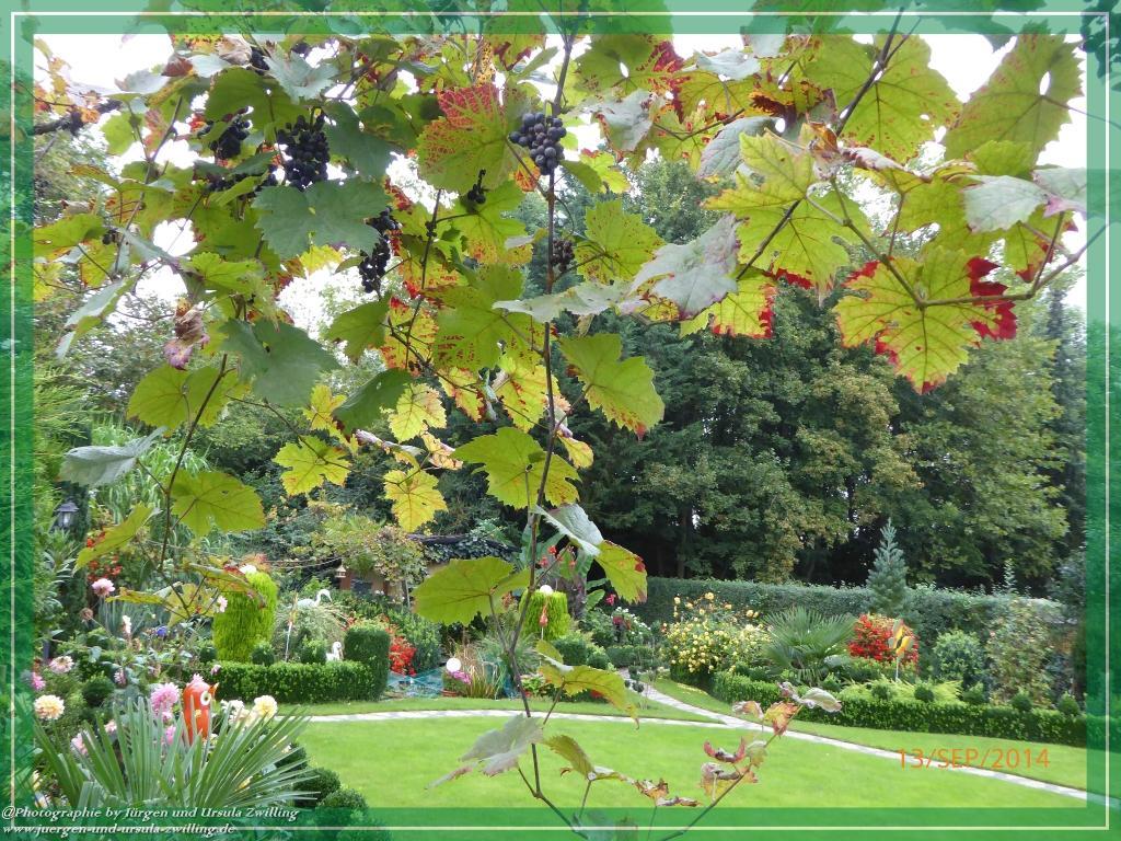 Mit Farbenpracht, läuten wir die letzte Sommerwoche ein und freuen uns auf einen farbenprächtigen Herbst