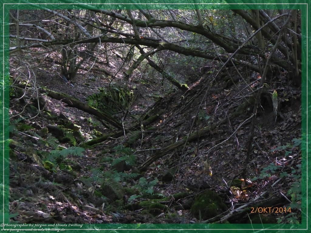 Philosophische Bildwanderung Hiwweltour-Tiefenthaler Höhe