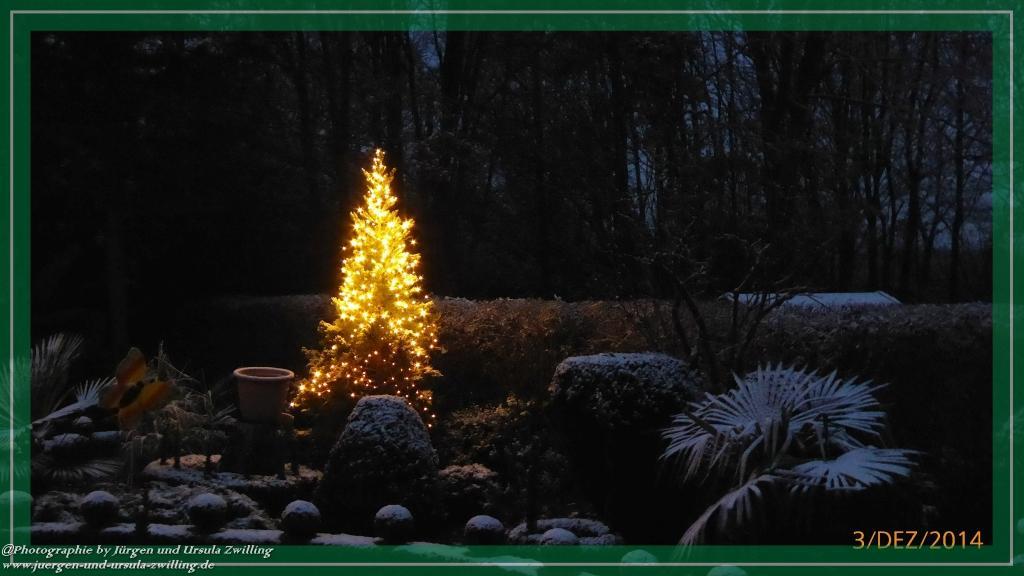 03.12.2014 Weißes Morgenerwachen im Garten