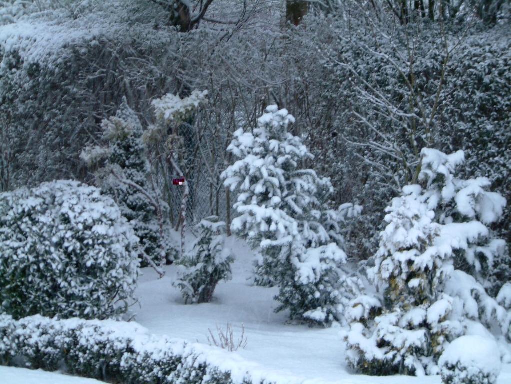 Gartenjahr 2004