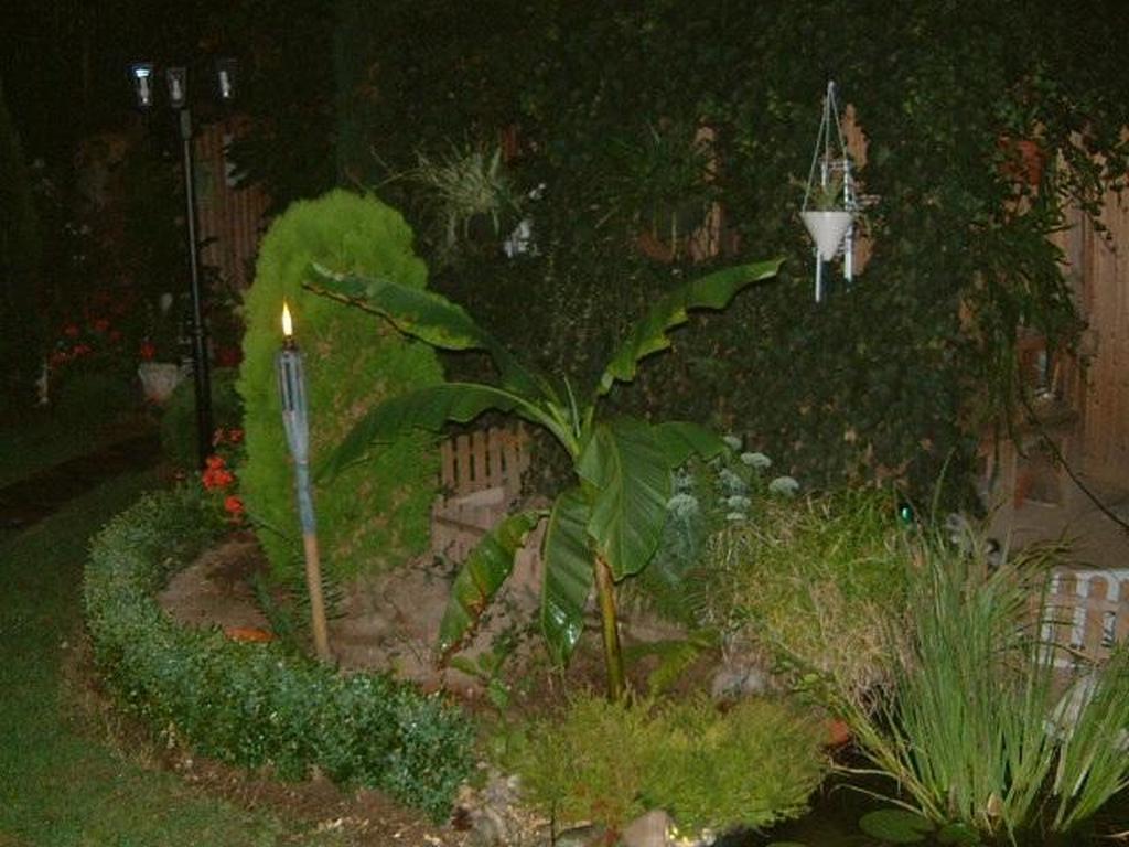 Gartenjahr 2003